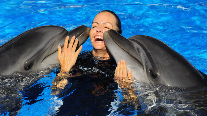 Swimming with dolphins in Kemer